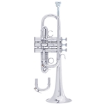 Bach Professional	Model ADE190S D / Eb Trumpet